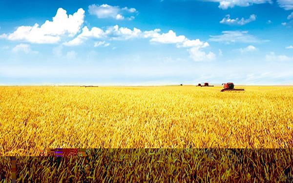 精准农业管理平台